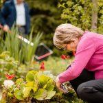 Jardinage : hobby recommandé aux retraités