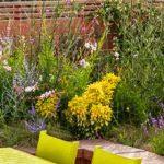 Les plantes pour embellir la terrasse