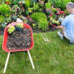 Entretenir le jardin : les fondamentaux