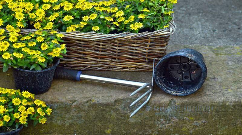 Pot de jardin en panier